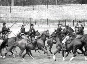 horses bayonets